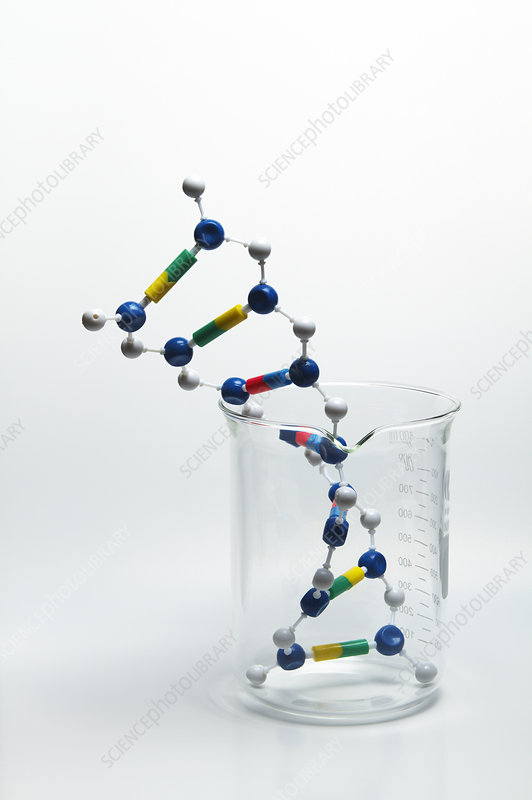 DNA Double Helix in Beaker