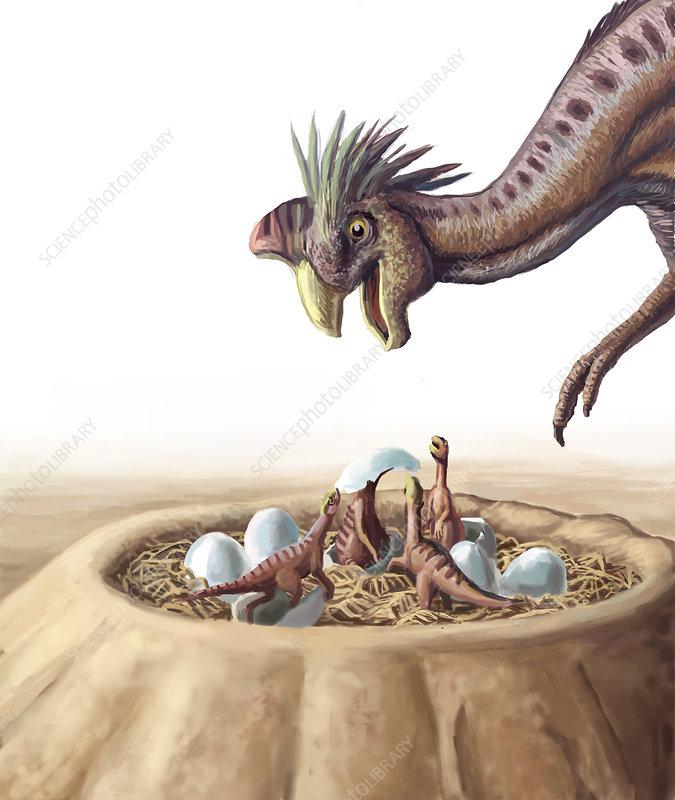 Oviraptor and Nest, illustration