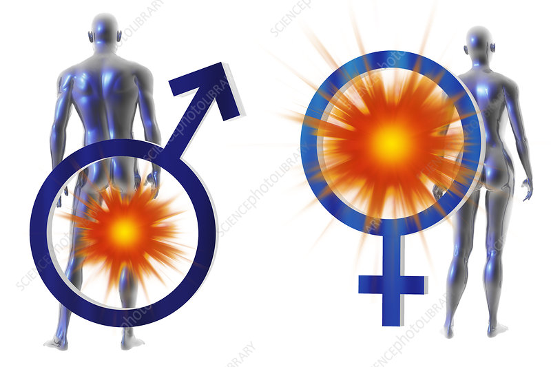 Female Male Pain Symbols, illustration
