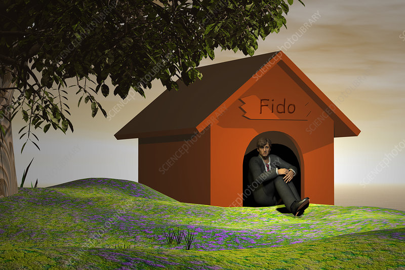 Businessman in the Doghouse, illustration