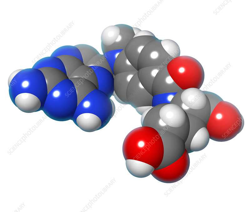 Methotrexate Molecule, illustration