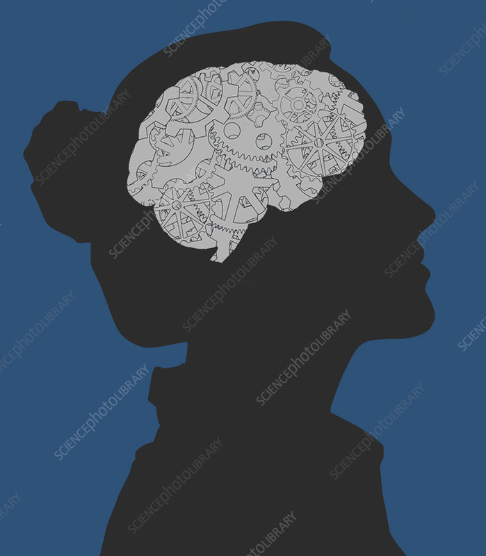 Cerebral Activity in Woman, illustration