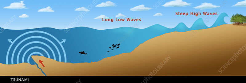 Underwater Earthquake, illustration