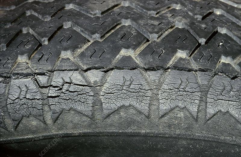 Rotting Tire