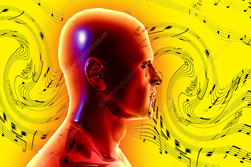 Brain Waves and Music, illustration