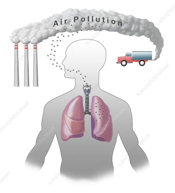 Air Pollution and Lungs, illustration