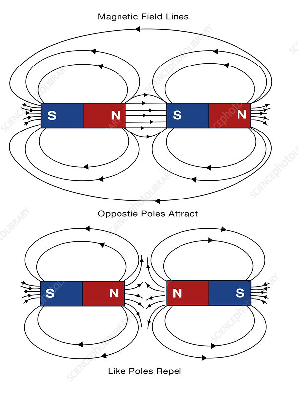 Magnetic Field Lines, illustration