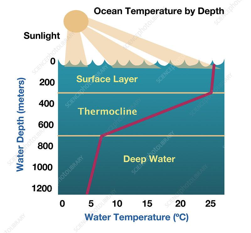 Ocean Temperature by Depth, illustration