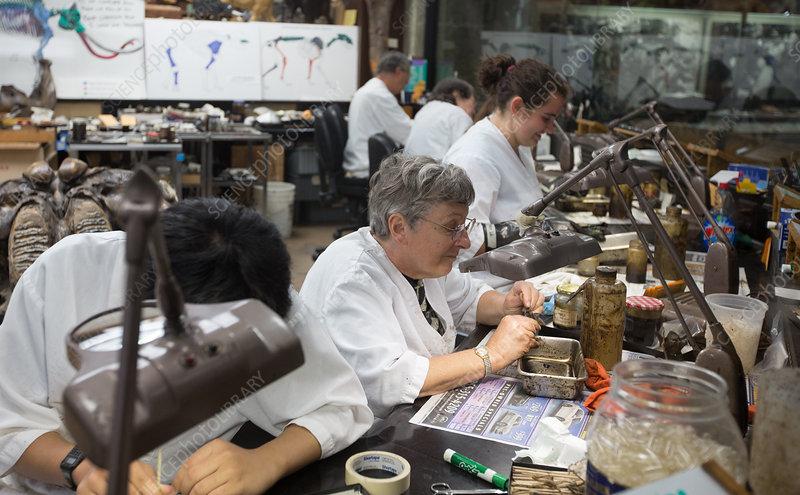 Palaeontologists at Work