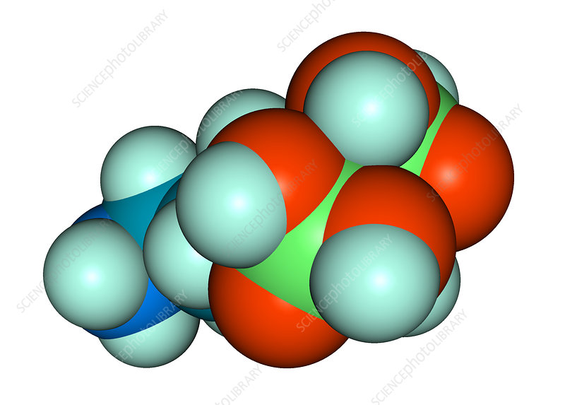 Molecular Model of Fosamax, illustration