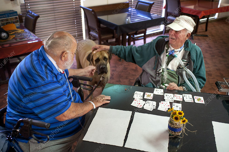 Senior Patients in Rehab Clinic with Dog