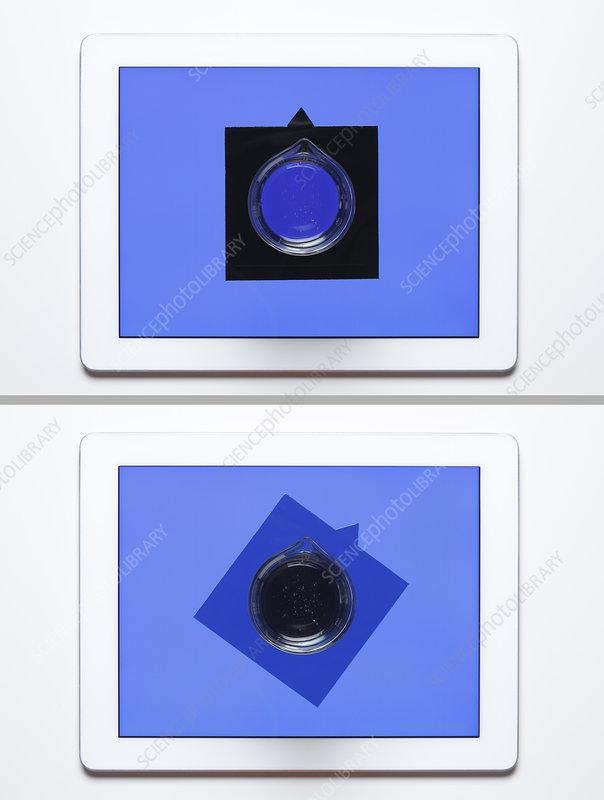 Optical activity, blue light