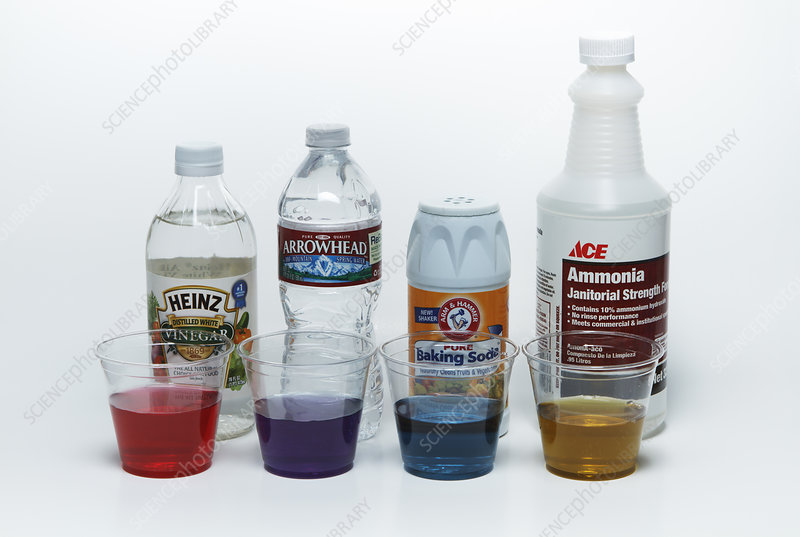 Red cabbage juice indicator
