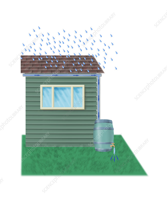 Rain barrel, illustration