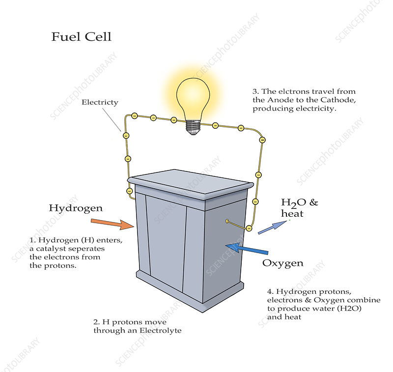 Fuel Cell, illustration
