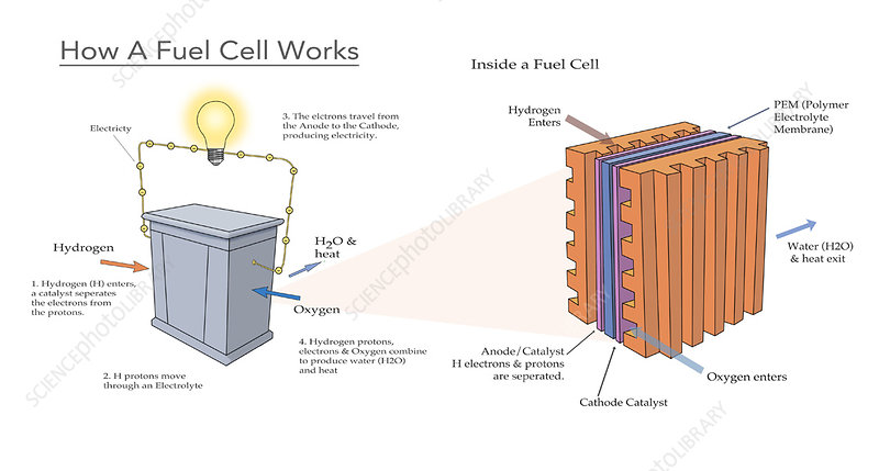 Fuel Cell with Heat & Water Byproducts