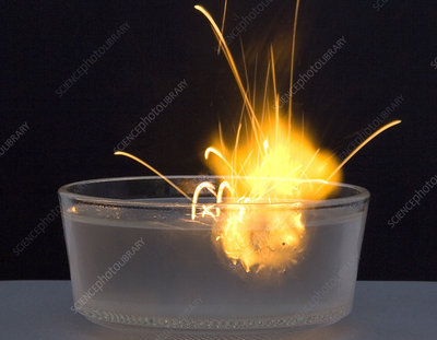 Metallic Sodium Reacts with Water