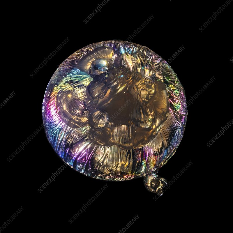 Jellyfish sculpture in polarized light
