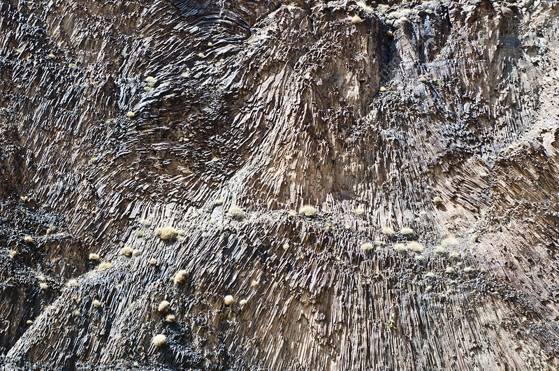 Columnar Basalt in the Grand Canyon