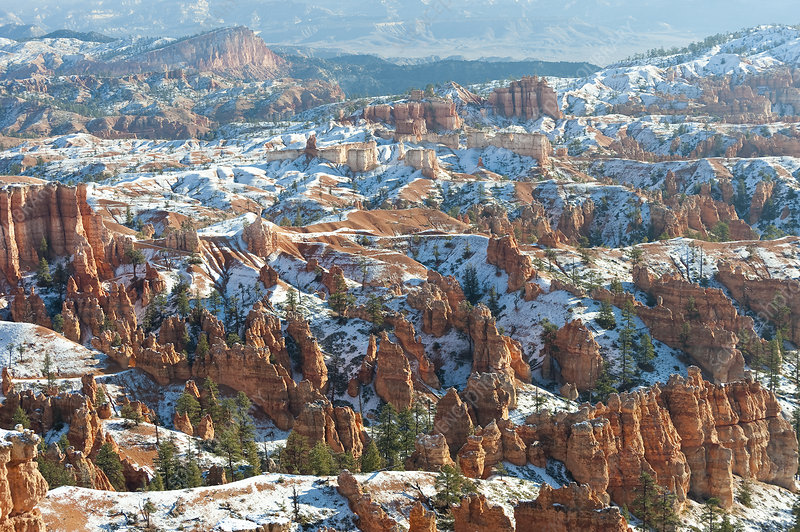 Winter Scene, Bryce Canyon National Park