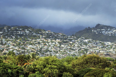 Suburb of Honolulu, Hawaii