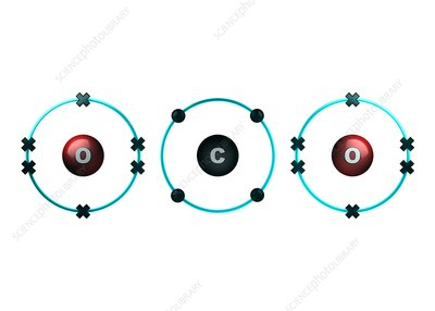 Bond formation in carbon dioxide molecule
