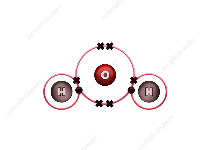 Bond formation in water molecule