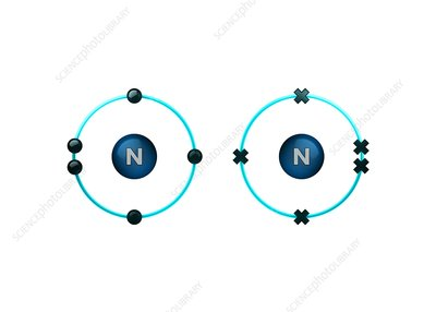 Bond formation in nitrogen molecule
