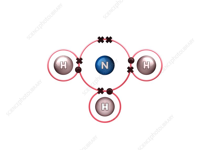 Bond formation in ammonia molecule