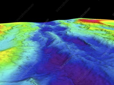 Mid-Atlantic Ridge, 3D bathymetric image