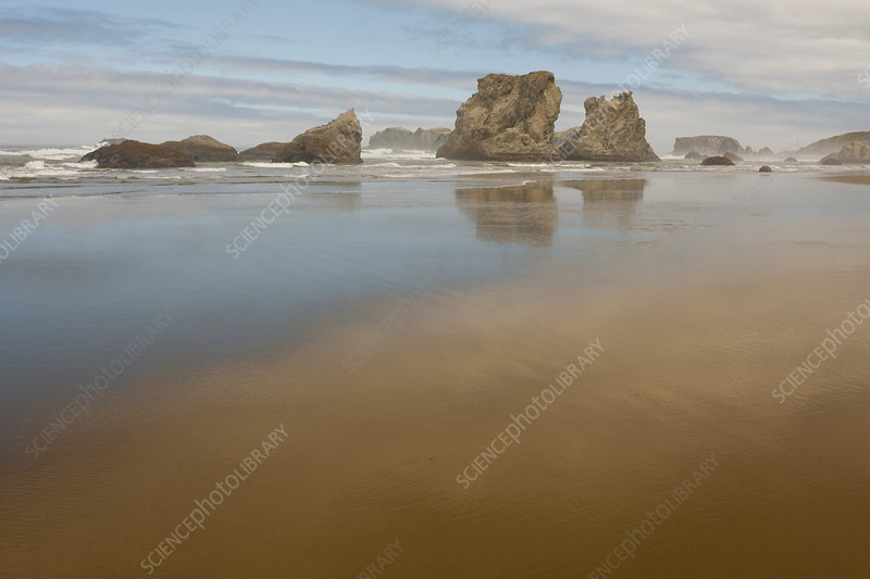 Sea Stacks at Low Tide