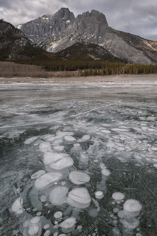 Bubbles in Ice on Abraham Lake