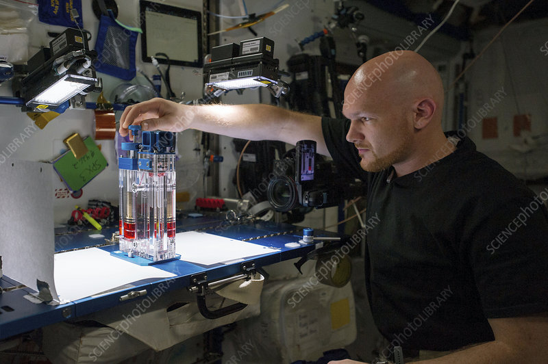 Capillary Flow Experiment in space