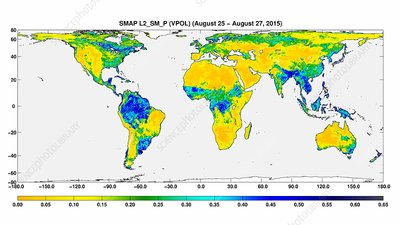 Surface soil moisture, global map
