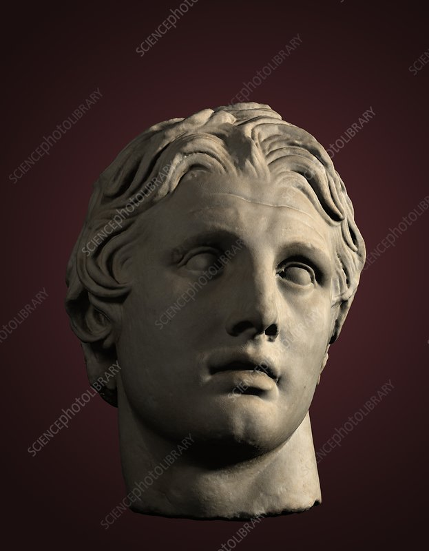 Head of Alexander the Great