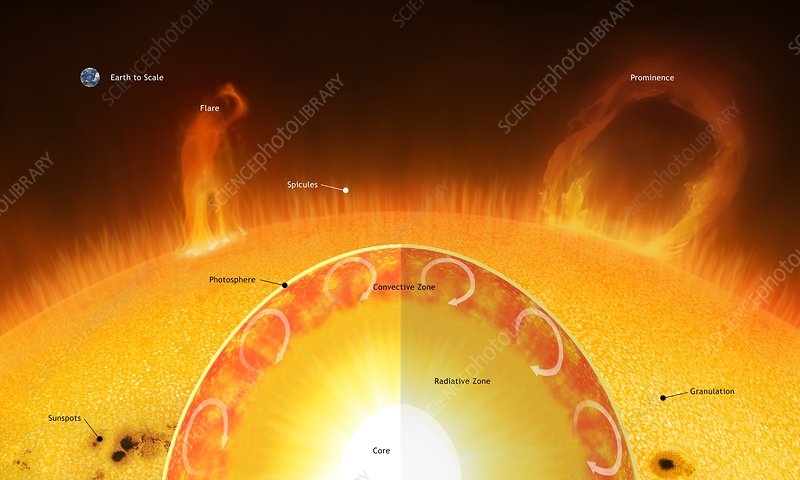 Interior, Surface and Atmosphere of Sun