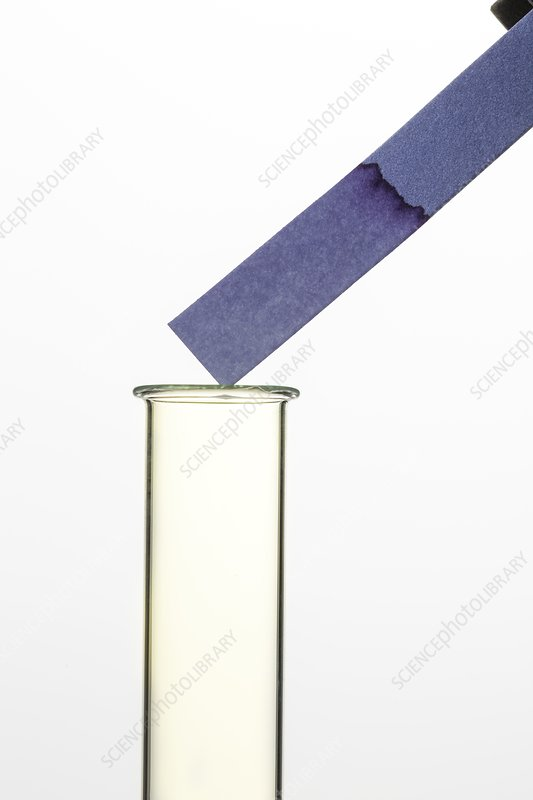 Test for chlorine