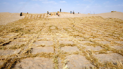 Desertification prevention, China