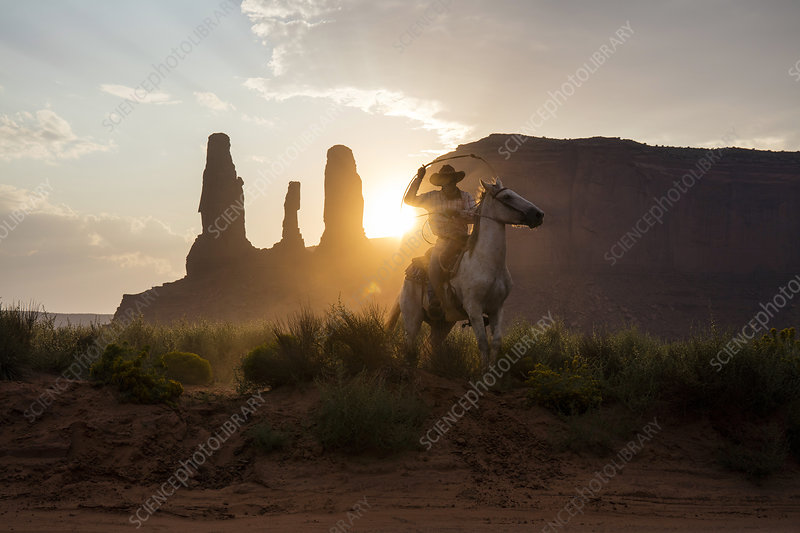 Cowboy, Arizona, USA