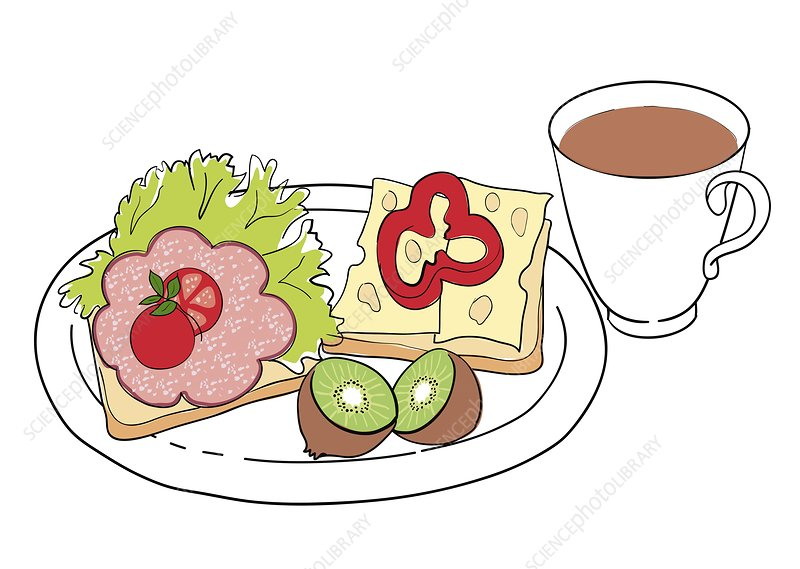 Nutritious breakfast, illustration