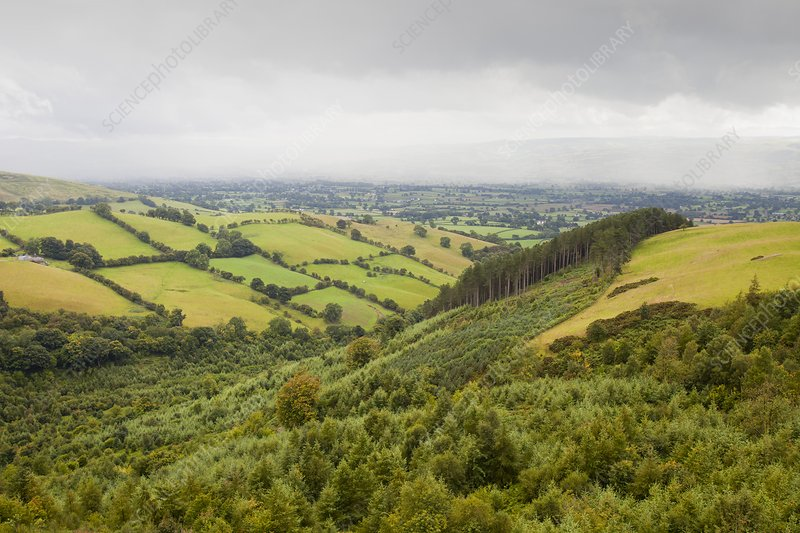 The Vale of Clwyd, UK