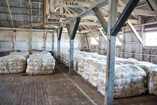 Compacted sheep fleeces in storage