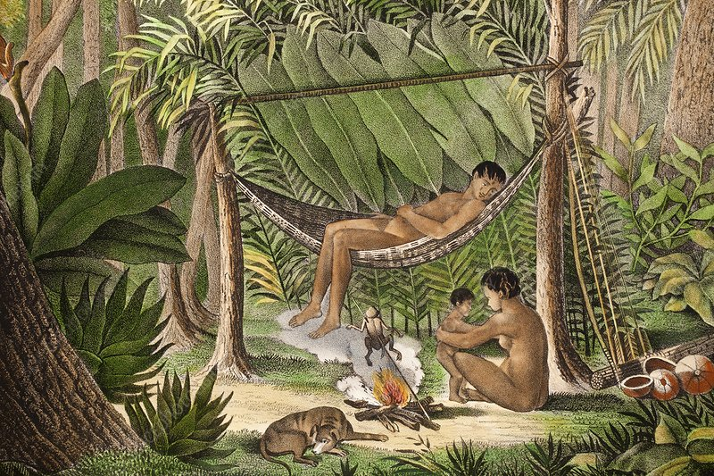 Preparing dart frog toxin, Amazon, 1820s