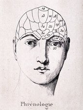 Phrenology head chart, 1838