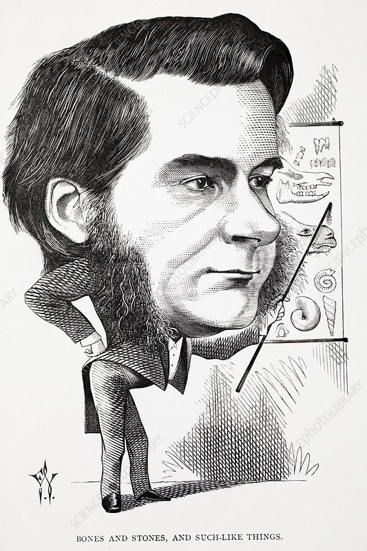 Caricature of Thomas Huxley, 1873 - Stock Image - C028/9625 - Science Photo  Library