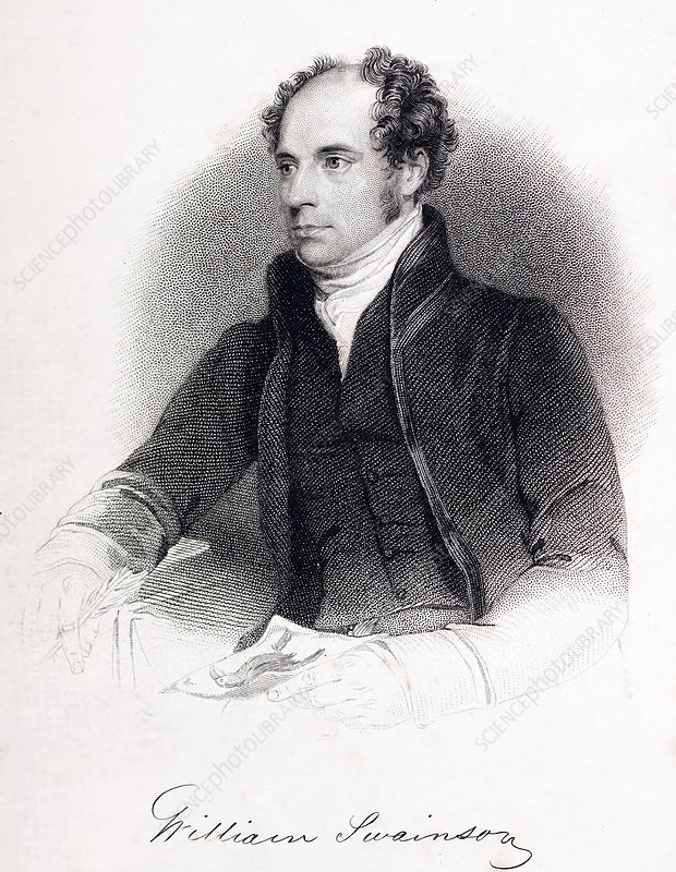 William Swainson, British naturalist