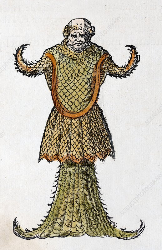 1554 Rondelet's Sea Monk Monster