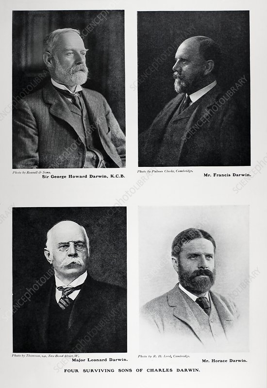 Four sons of Charles Darwin, 1905