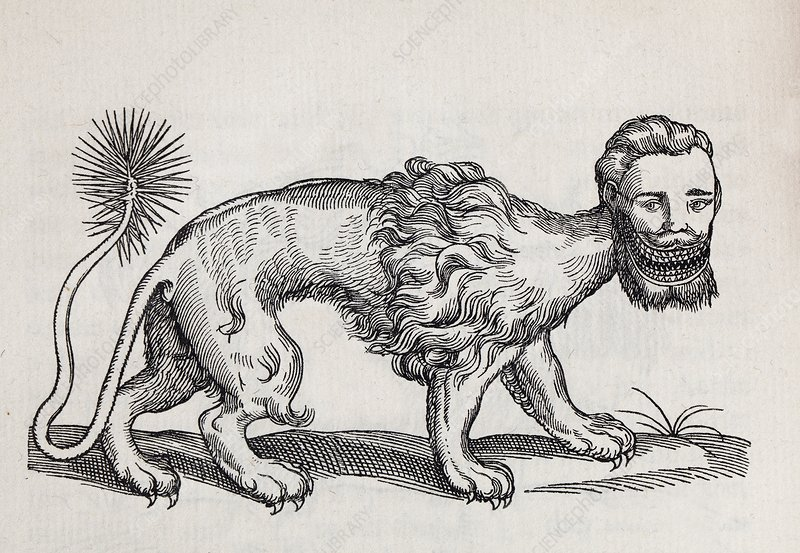 1607 Manticore or Mantichore monster