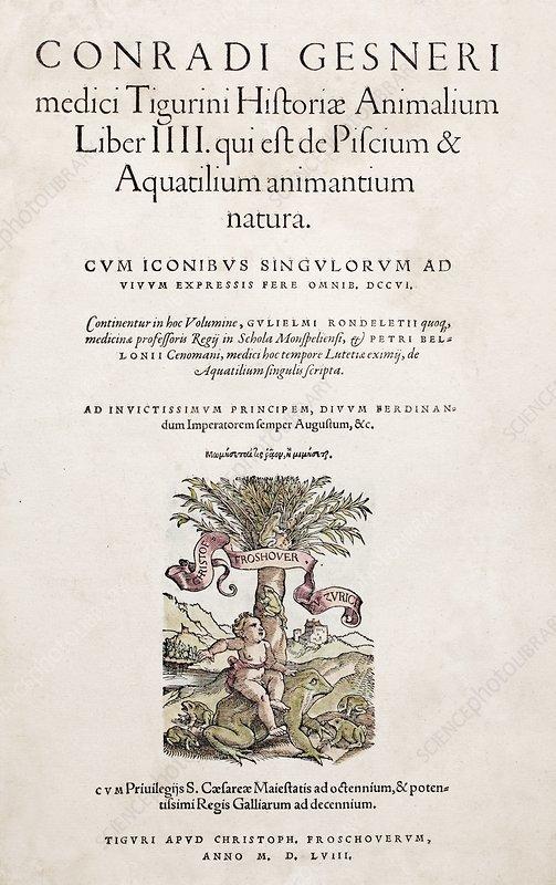 1558 in science